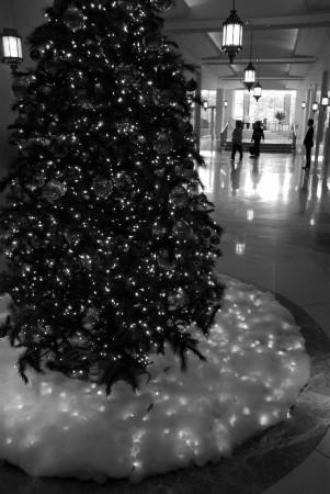 1(白黒)
