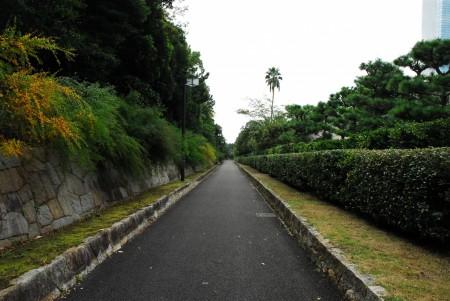 海浜幕張公園(カラー)(1)