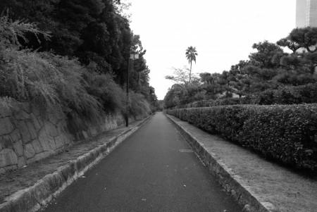 海浜幕張公園(白黒)(1)