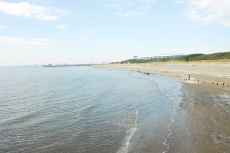 海(1)カラー