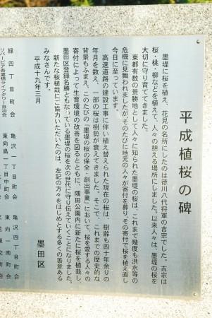 平成植桜の碑(2)