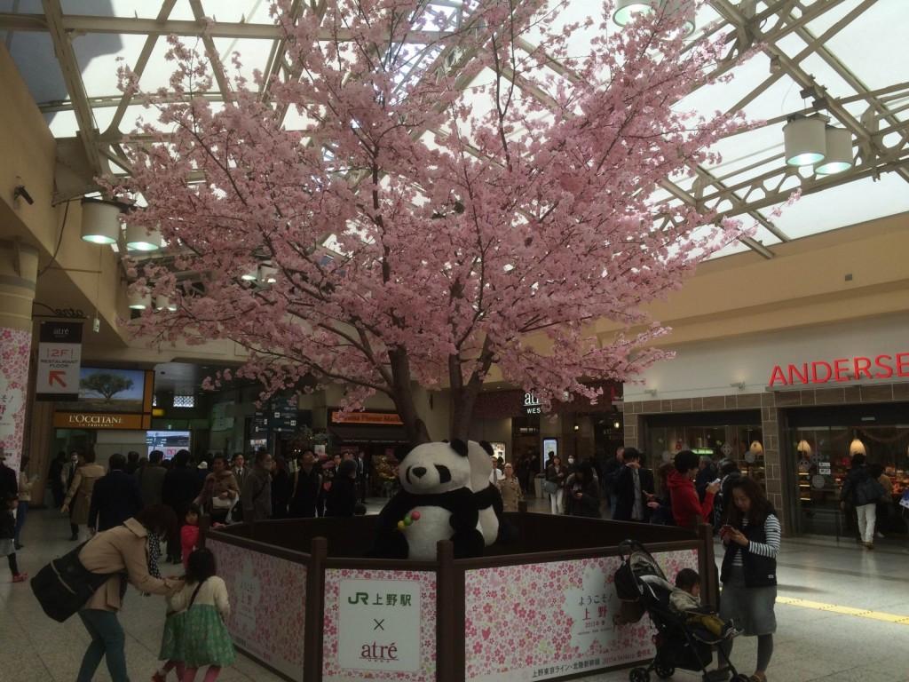 上野駅で桜の演出