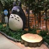 夏の甲子園2016~大阪でトトロ~