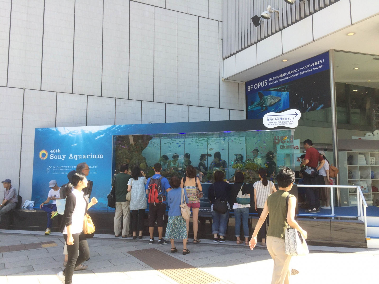 48th Sony Aquarium(1)