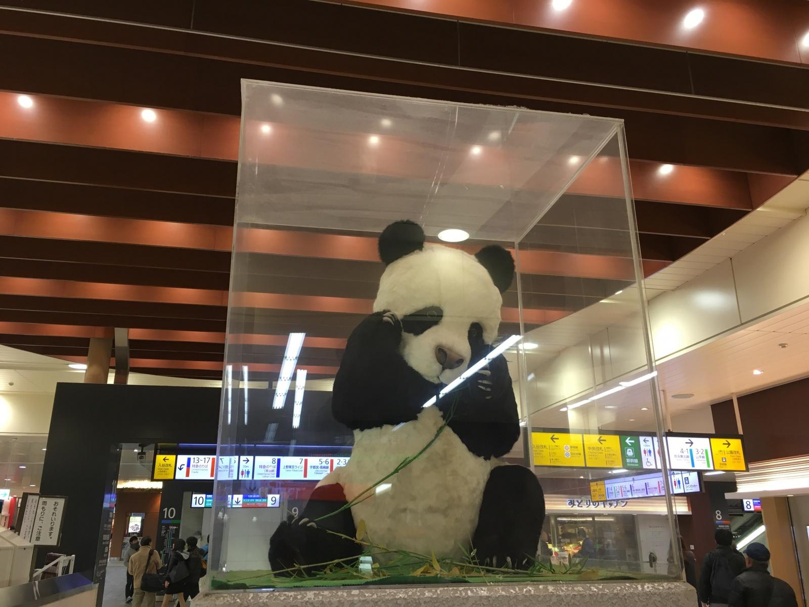上野駅のパンダ